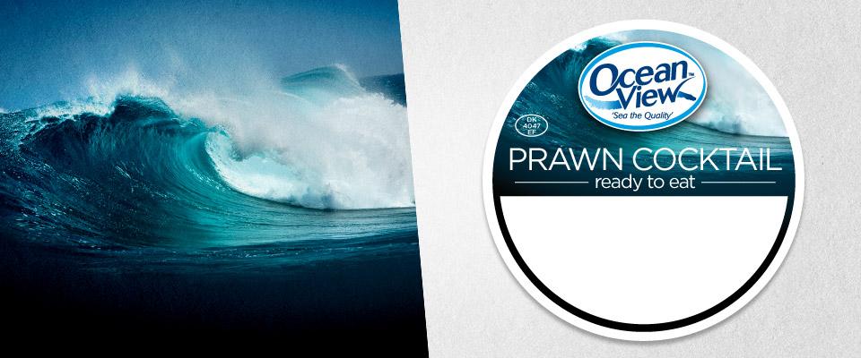 ocean_view_branding_3