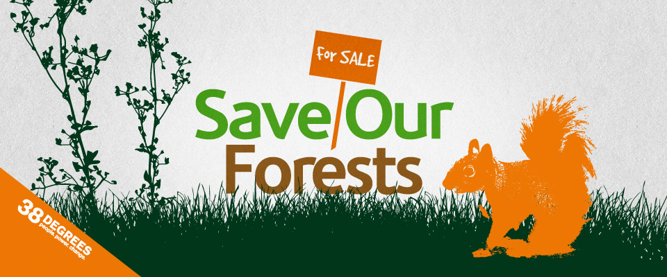 save_our_forests_print_6