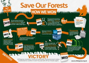 38 Degrees Save Our Forests campaign infographic
