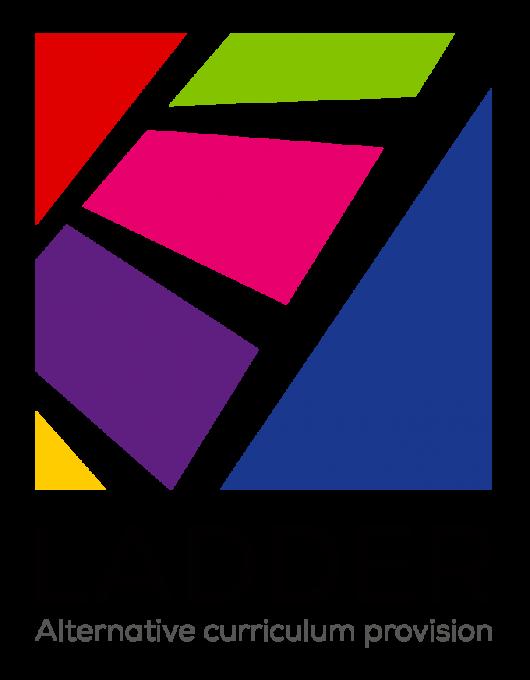 LADDER logo - colour square