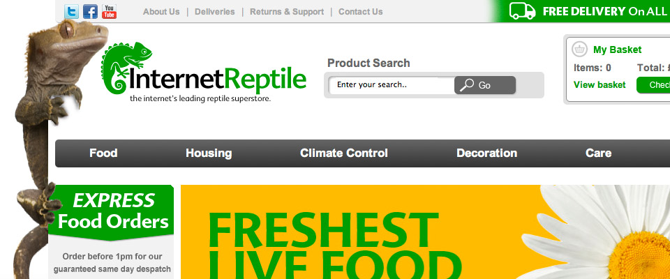 internet_reptile_branding_3