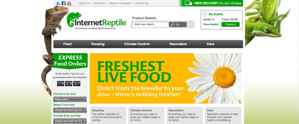 internet_reptile_branding_5