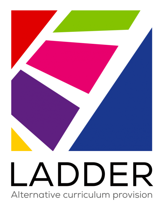 LADDER logo - colour square